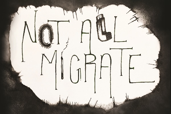 "Debut Author Uses Lived Experience to Explore the Intense Emotions of Addiction in ""Not All Migrate"""